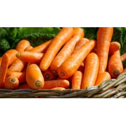Zanahoria 1 kg aprox