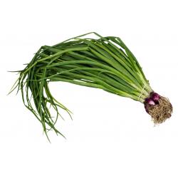 Verdeo agro x 1/2 kg aprox
