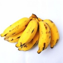 Banana  agro 1 kg aprox
