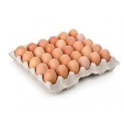 Huevos de Granja de Color...