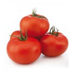 Tomate agro 1 kg aprox