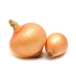 Cebolla x 1 kg aprox